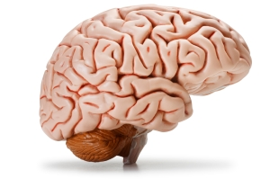 Turns out there is this pink thing inside your head that performs poorly after getting hit a bunch of times.