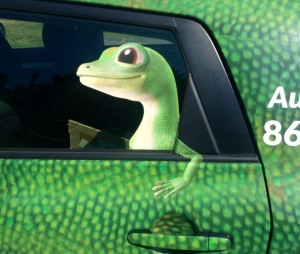 geico this blog needs sports