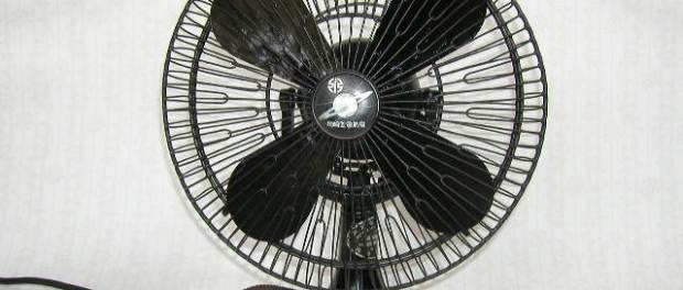 fan this blog needs sports